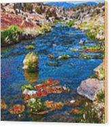 Painted Hot Creek Springs Wood Print