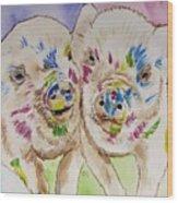 Painted Ladies Wood Print