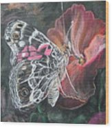 Painted Lady On A Pansy Wood Print