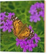 Painted Lady On Purple Verbena Wood Print