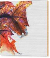 Painted Leaf Series 1 Wood Print
