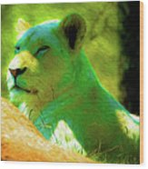 Painted Lion Wood Print