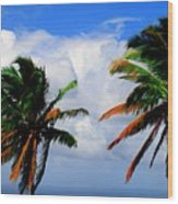 Painted Palm Trees Wood Print