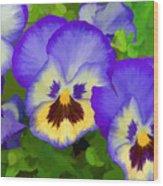 Painterly Pansies Wood Print