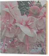 Painted Pink Fushia Wood Print