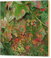 Painted Plants Wood Print