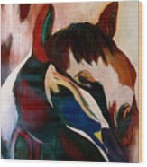 Painted Pony Wood Print