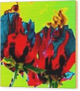 Painted Poppies Wood Print
