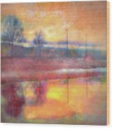 Painted Reflections Wood Print