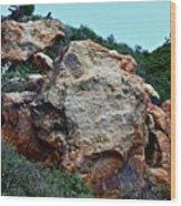 Painted Rocks Wood Print