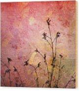 Painted Skies 2 Wood Print