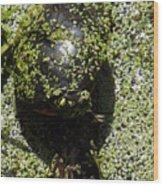 Painted Turtle Camouflague Wood Print