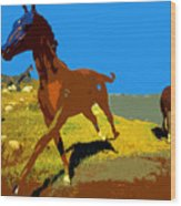 Painted War Horses Wood Print