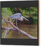 Painting Blue Heron Oak Creek Wood Print