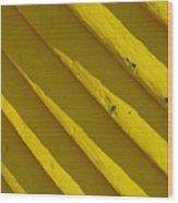 Painting It Yellow Wood Print