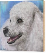Painting Of A White Fluffy Poodle Smiling Wood Print
