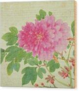 Painting Of Peonies Wood Print