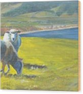 Painting Of Sheep On A Cliff Top Wood Print