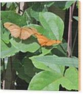 Pair Of Butterflies Wood Print