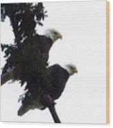 Pair Of Eagles In A Tree Wood Print