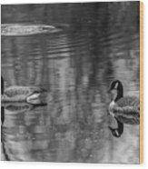 Pair Of Geese, Nisqually National Wildlife Refuge, Washington, 2016 Wood Print