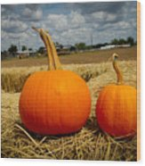 Pair Of Perfect Pumpkins Wood Print