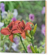 Pair Of Red Asiatic Lilies After A Rain Wood Print