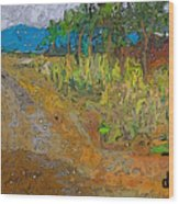 Paisaje - Chile - Campo 1 Wood Print