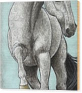 Paisleylusian Wood Print