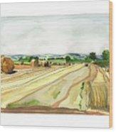 Paizay-le-tort, Au Sud Des Deux-sevres Wood Print