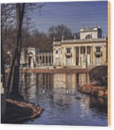 Palace On The Water  Wood Print