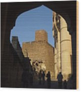 Palace Through Arch Wood Print