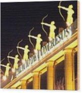 Palacio De Congresos Wood Print