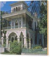 Palacio De Valle Wood Print