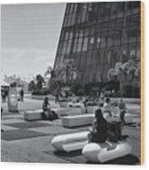 Palais Des Festivals Et Des Congres Wood Print