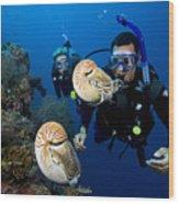 Palau Underwater Wood Print