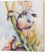 Pale Iris Wood Print