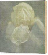 Pale Misty Iris Wood Print