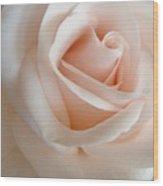 Pale Of Rose Wood Print