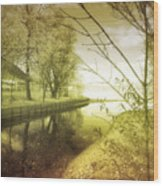 Pale Reflections Of Life Wood Print