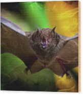 Pale Spear-nosed Bat In The Amazon Jungle Wood Print
