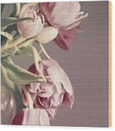 Pale Tulips Wood Print