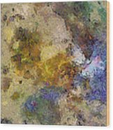 Paleology Weave  Id 16097-223127-16640 Wood Print