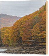 Palette Wood Print