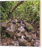 Palikes Stream Along Trail Wood Print