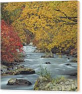 Palisades Creek Wood Print