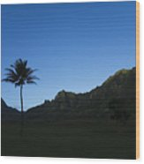 Palm And Blue Sky Wood Print