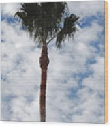 Palm And Clouds Wood Print