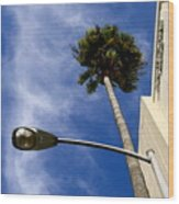 Palm And Streetlight Wood Print