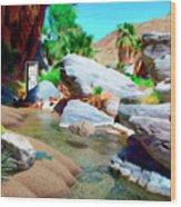 Palm Canyon Park Wood Print